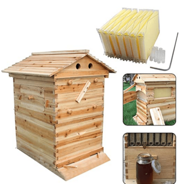 Purchase a Hive